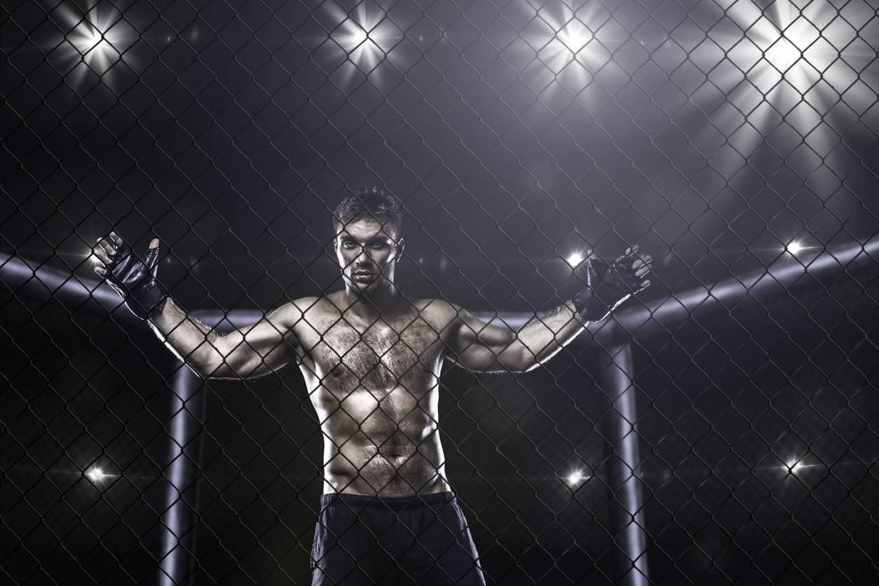 brasileiros no UFC